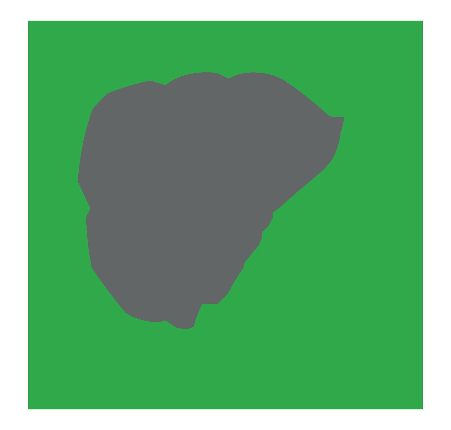 ecodpf.cz